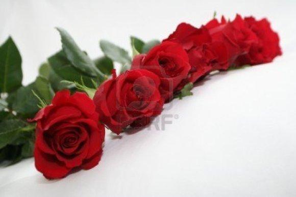 garland of deep rose.