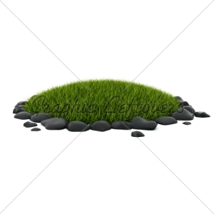 grass-in-the-flower-bed0000