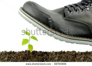 stock-photo-sprout-and-careless-step-the-nature-protection-concept-88765906