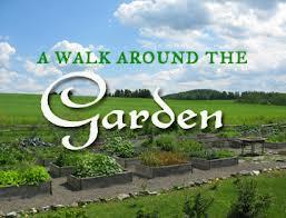 walk around the garden