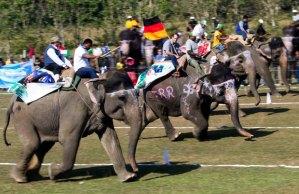 elephant-race_2095078i