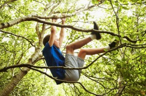 portrait of a teenage boy climbing in a tree, backlit