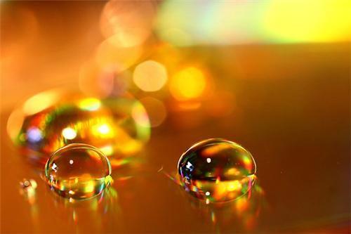 nectar drops.jpg