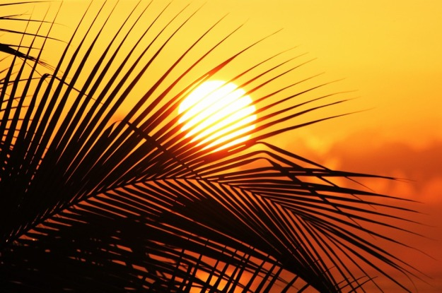 sun-of-jamaica-910070_960_720